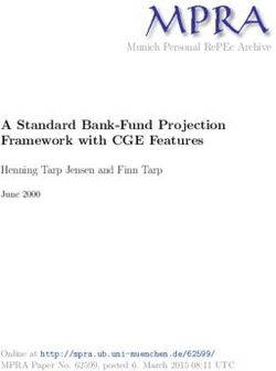 A Standard Bank-Fund Projection Framework with CGE Features
