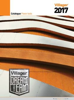 Catalogue Power tools Villager 2017