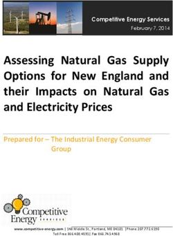 Assessing Natural Gas Supply Options for New England and their Impacts on Natural Gas and Electricity Prices