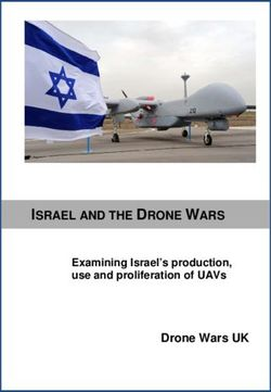 ISRAEL AND THE DRONE WARS
