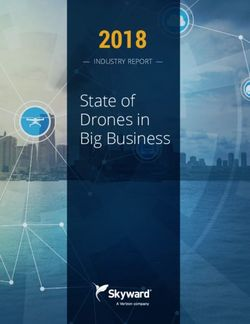 2018 State of Drones in Big Business