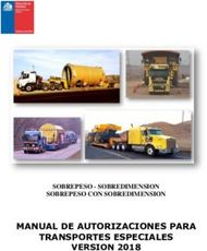 MANUAL DE AUTORIZACIONES PARA TRANSPORTES ESPECIALES VERSION 2018 - ...