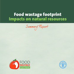 Food wastage footprint Impacts on natural resources